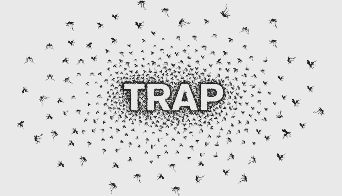 2015-trap-10